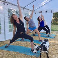 Original Goat Yoga- Illinois