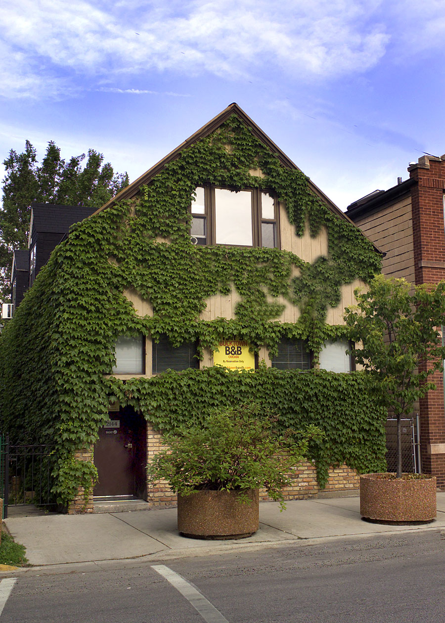 Ray's Bucktown Bed and Breakfast of Chicago