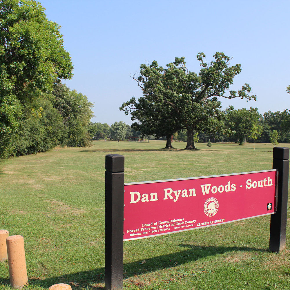 Dan Ryan Woods